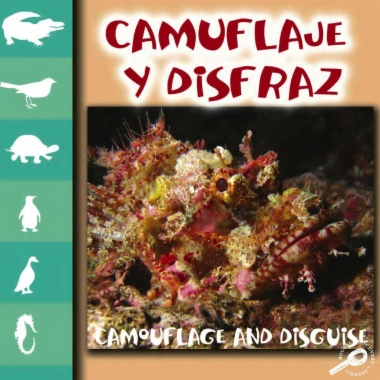 Camuflaje y disfraz = Camouflage and disguise