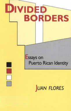 Divided Borders : Essays on Puerto Rican Identity